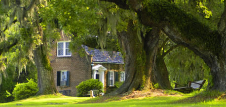 Welcome To Mansfield Plantation Georgetown South Carolina Bed And